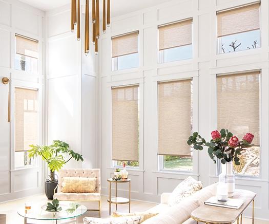 Smart Shades Window Treatments